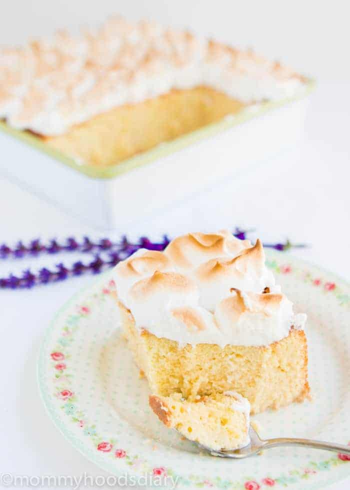 Tres Leches Cake-3