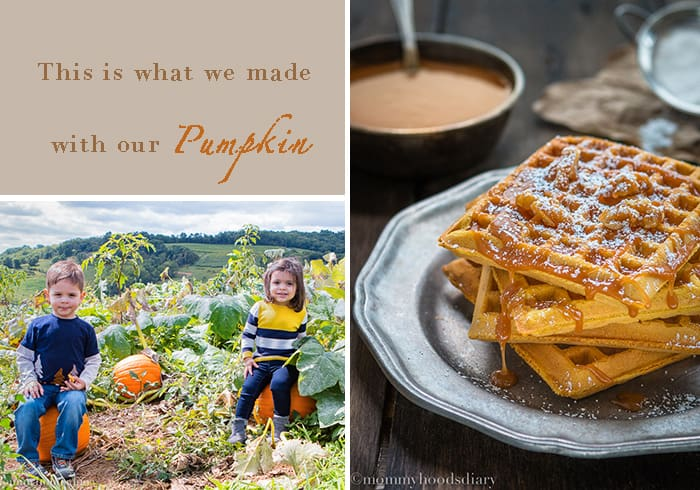 Pumpkin Picking | mommyshomecooking.com