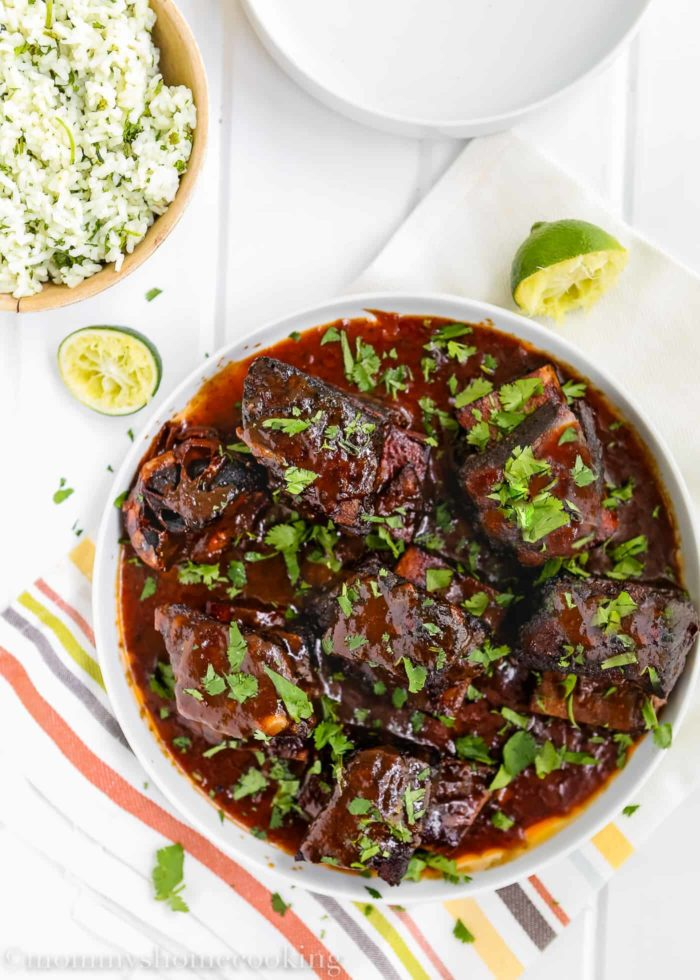 Mexican Short Ribs-2