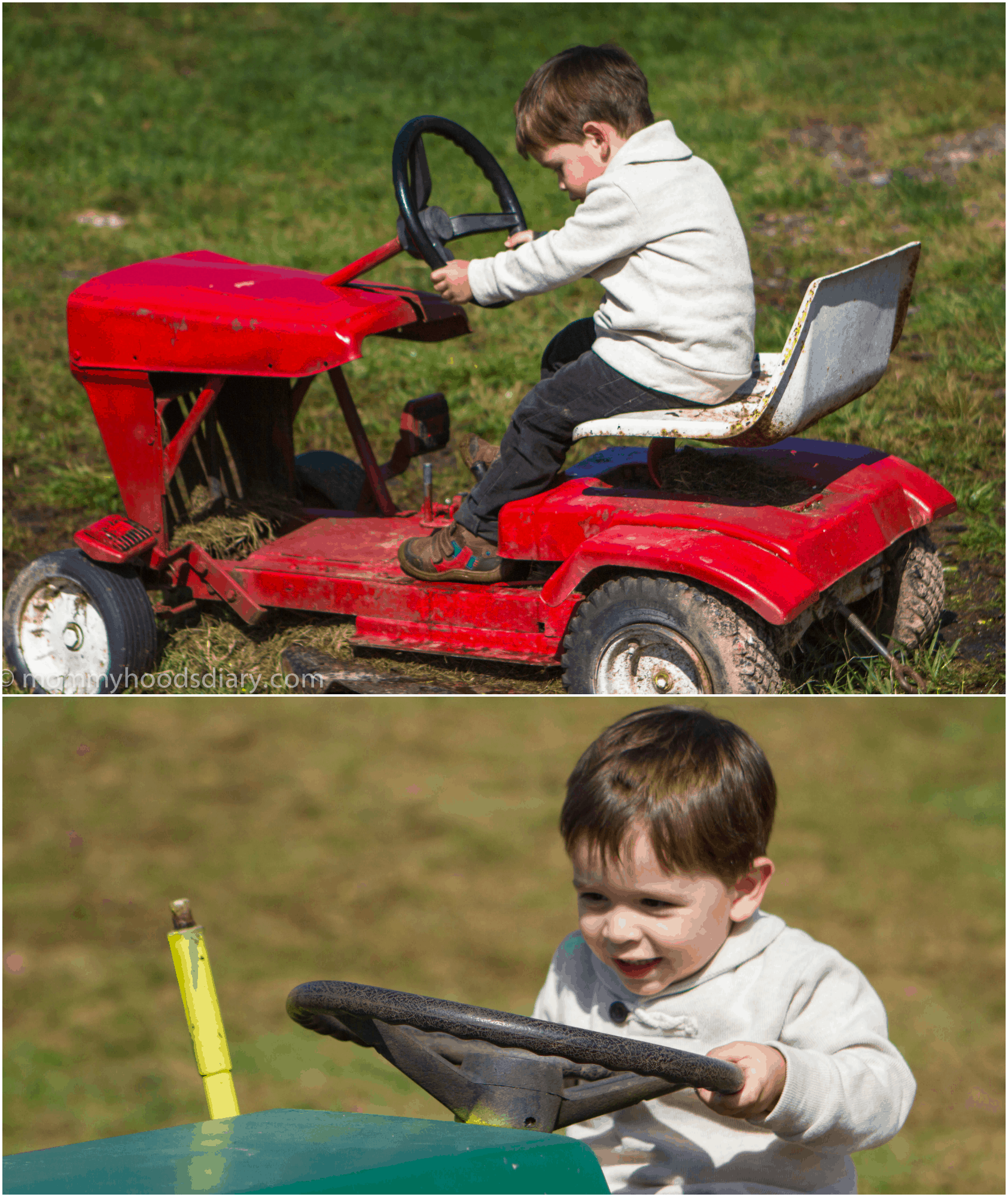 pumpkin picking Collage kid on a tractor