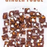 Ginger Fudge | Mommyhood's Diary