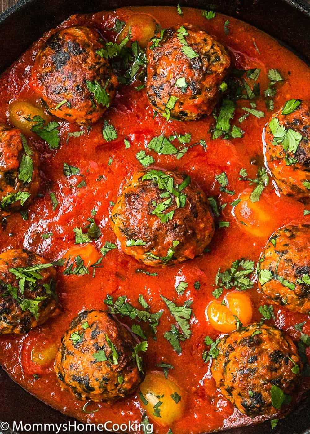 Eggless turkey meat balls in tomato sauce and herbs for garnish.