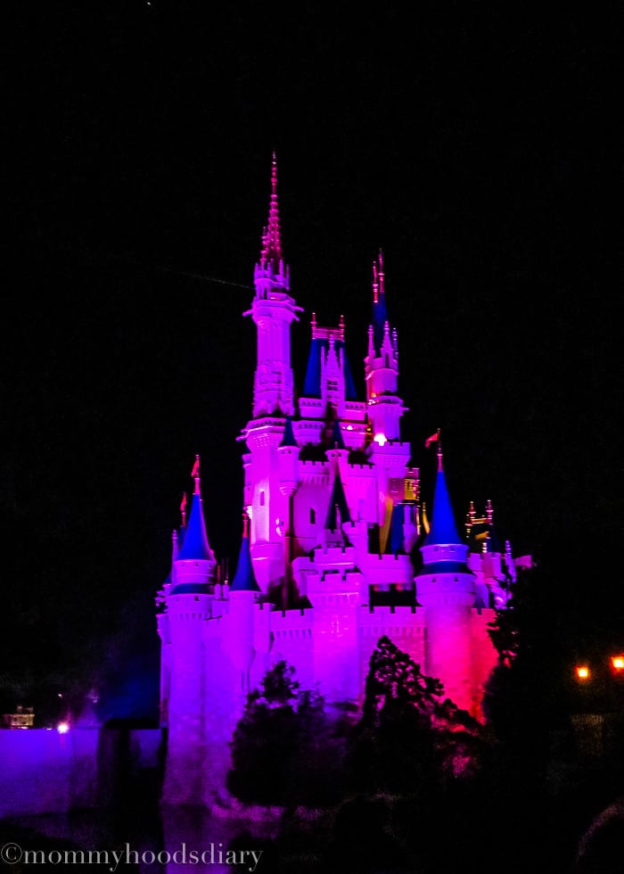 Walt Disney World 2015-15