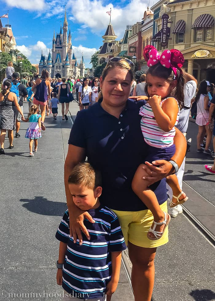 Walt Disney World 2015-16