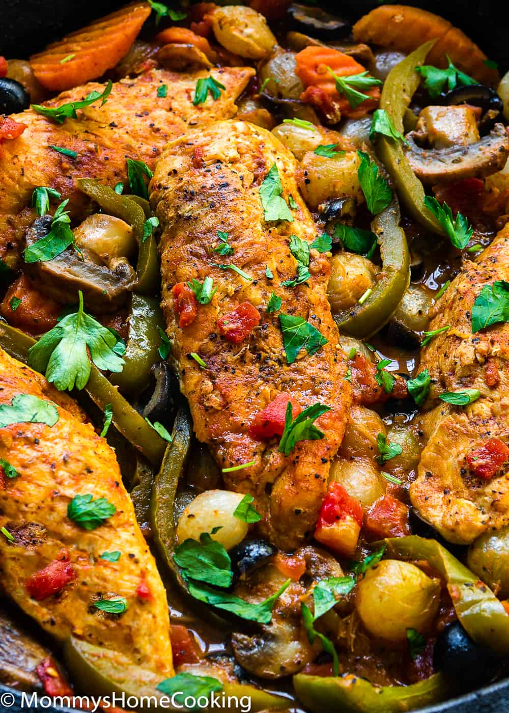 Easy Chicken Cacciatore and vegetables closeup