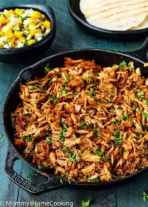 Instant Pot Mexican Pulled Pork
