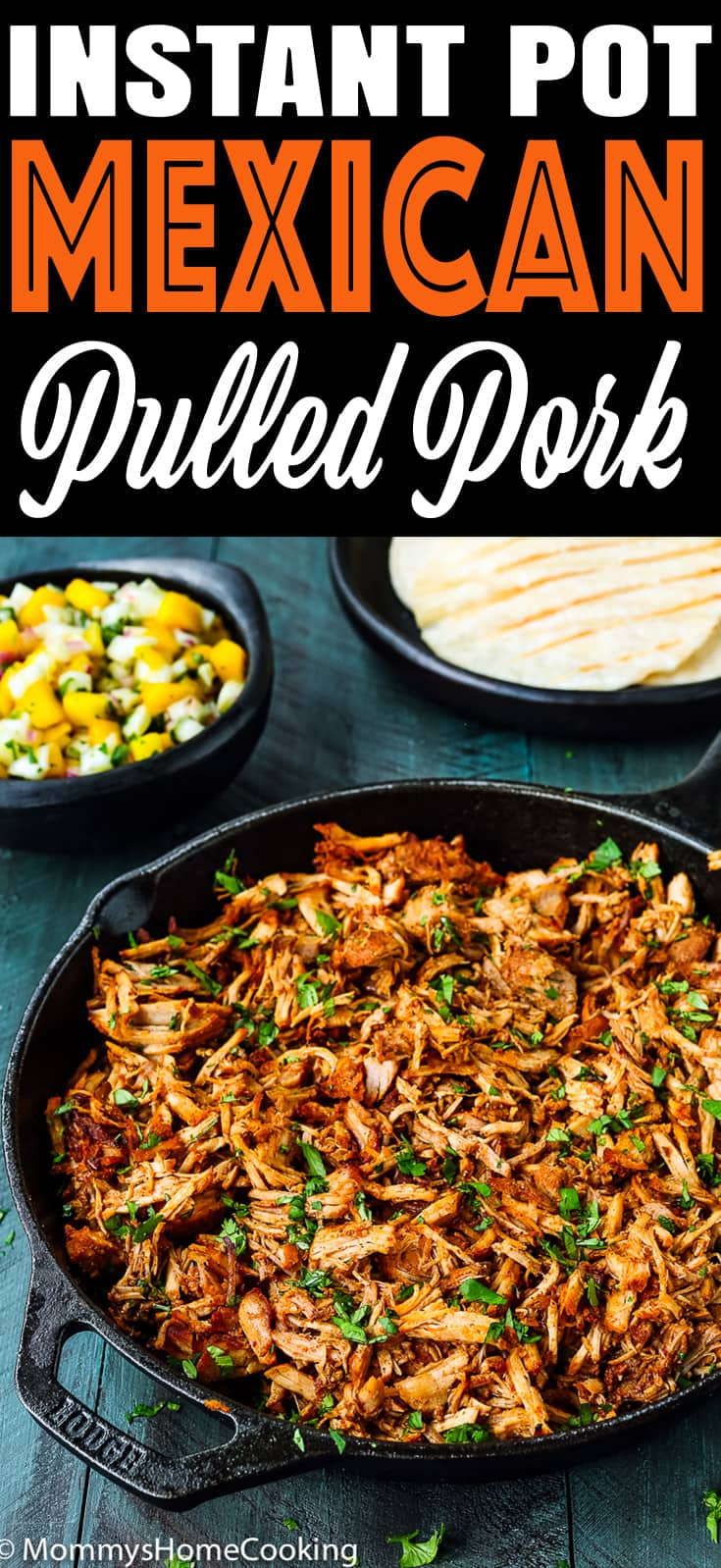 mexican pulled pork in a skillet with descriptive text