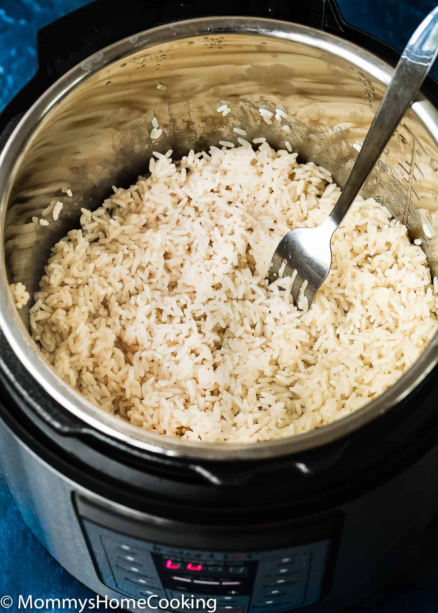Youtube Cooking: Instant Pot Fluffy Rice
