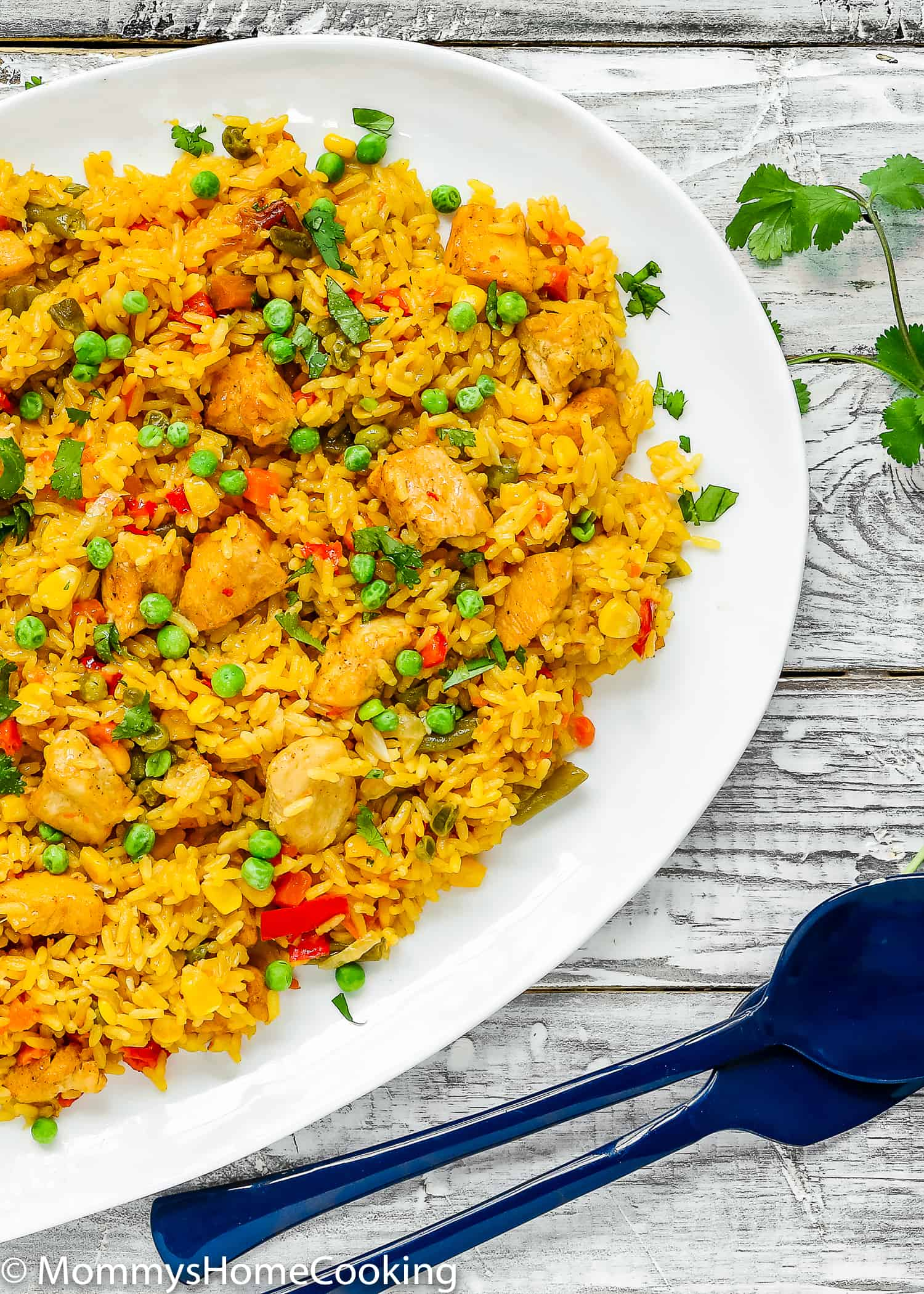 This Easy Instant Pot Arroz con Pollo recipe is ridiculously easy to make and unbelievably delicious! It has protein, vegetables, and grains cooked together in one pot in about 30 minutes. This one is definitely one to keep in yourrotation. https://mommyshomecooking.com