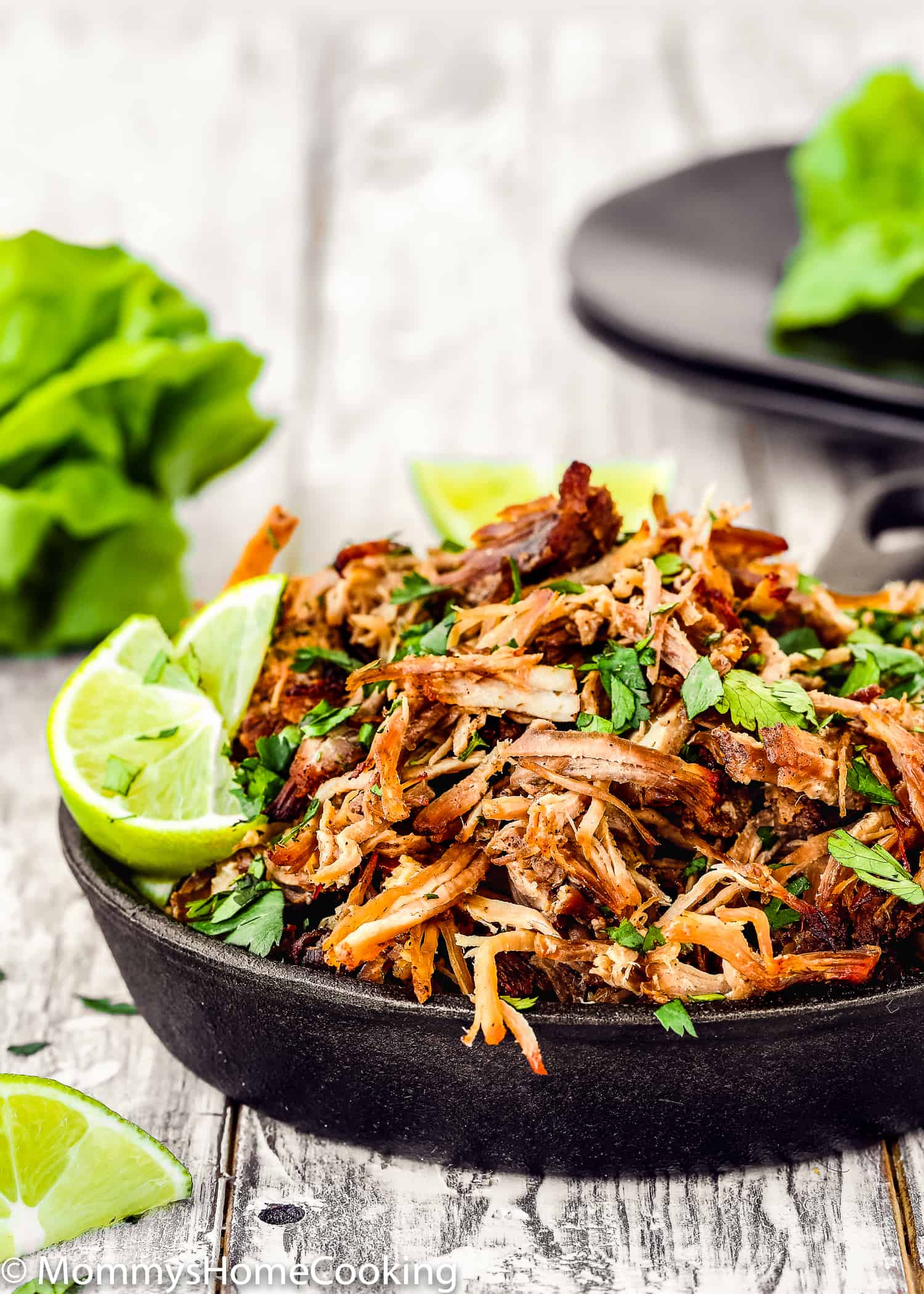 Instant Pot Crispy Pork Carnitas - Mommy's Home Cooking