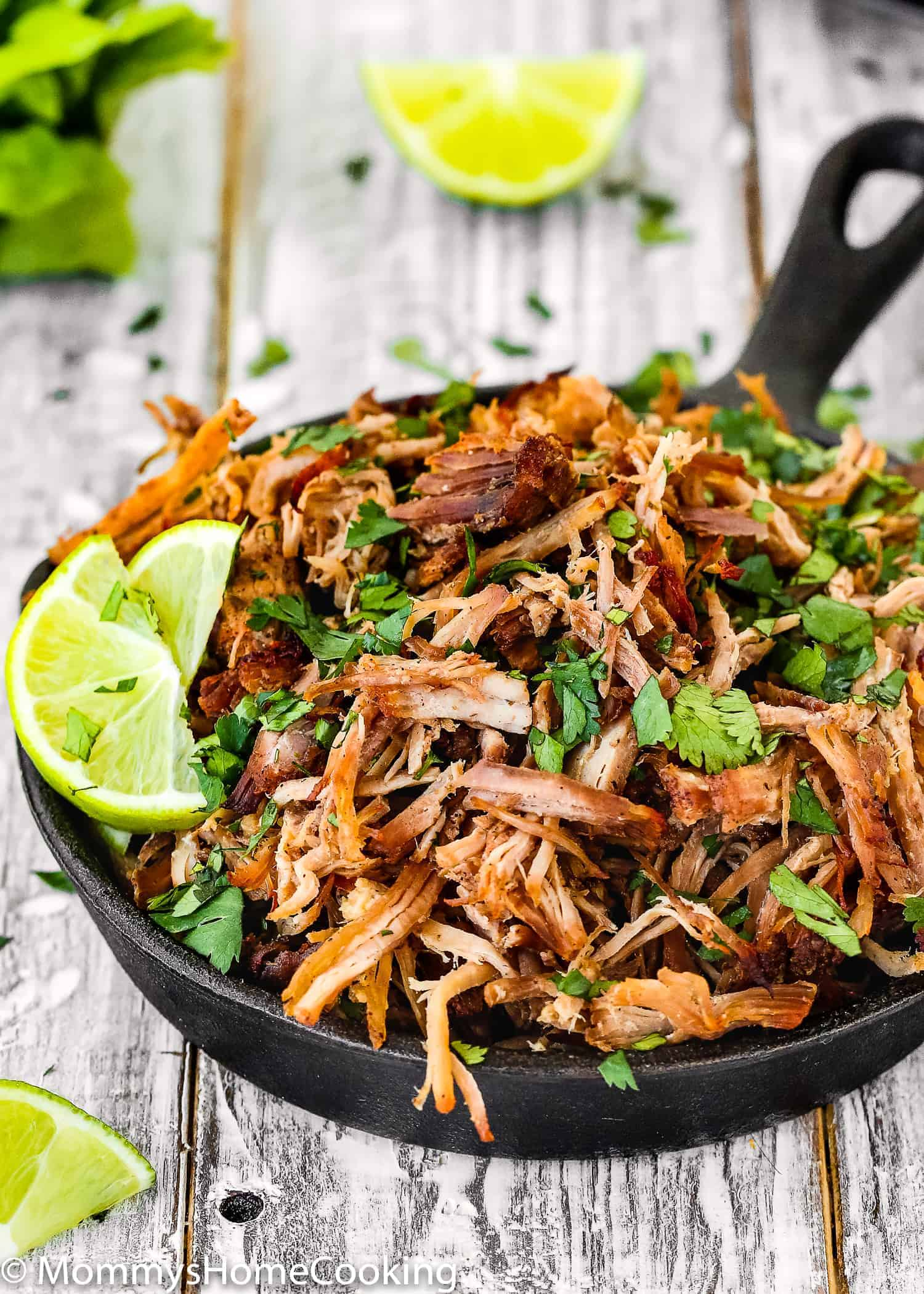 Instant Pot Crispy Pork Carnitas Mommy S Home Cooking
