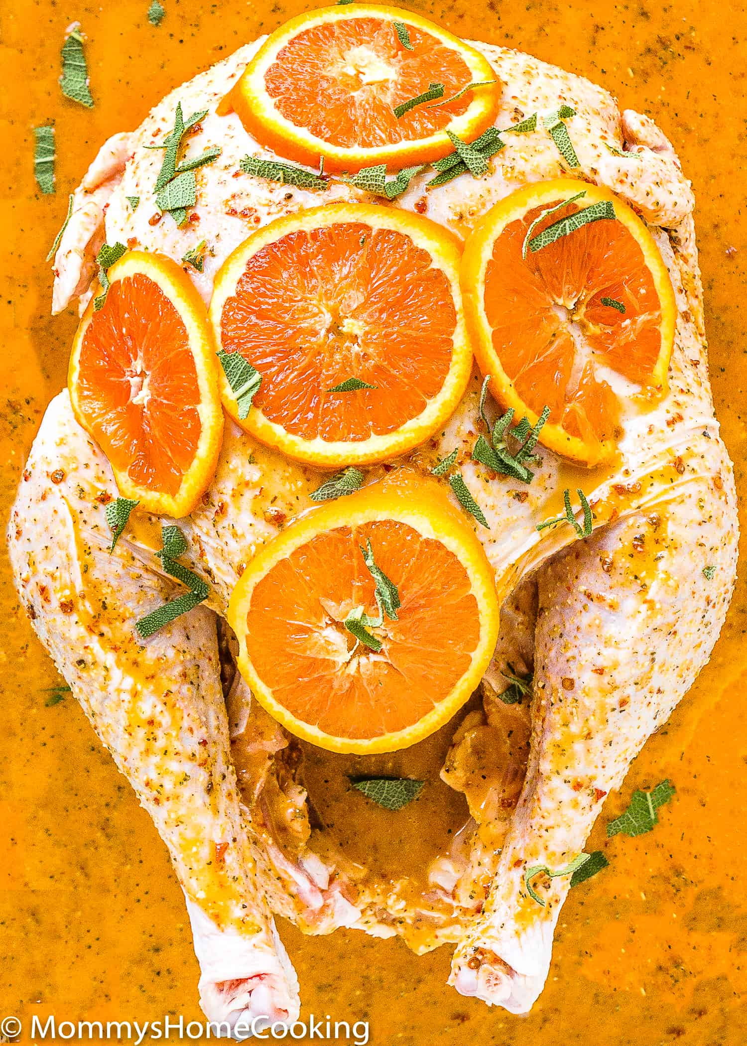 Look no further for the Best Turkey Marinade recipe ever! This BEST Citrus-Chipotle Turkey Marinade not only keeps your turkey moist but incredibly flavorful. Simple to prepare, and totally delicious. https://mommyshomecooking.com