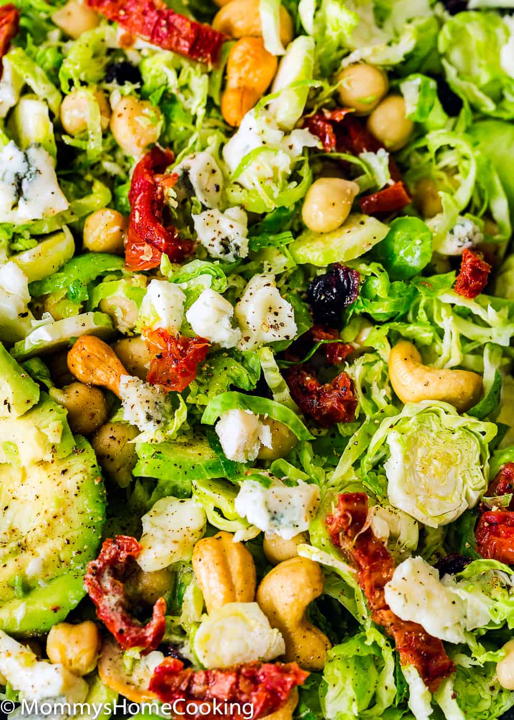 Easy Shaved Brussel Sprout Salad with Cranberries close-up