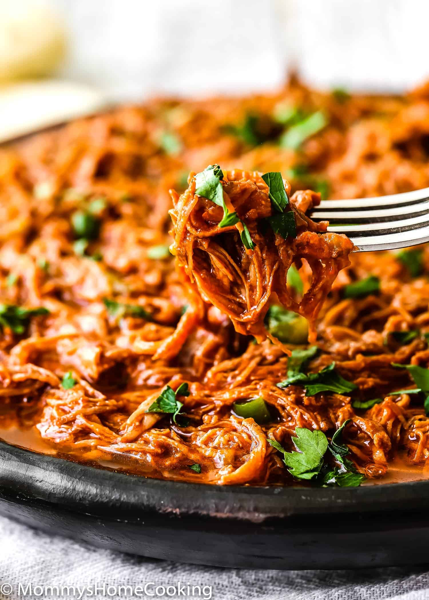 close up of Venezuelan shredded beef in a fork